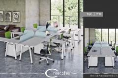 TGE-工作站